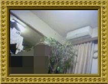 2015-02-26T15_23_08-62f67a.jpg