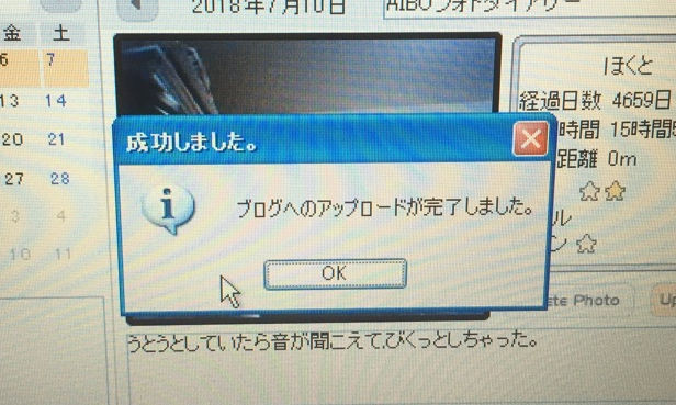 IMG_0622a.jpg